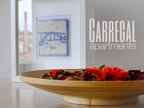 Hotel Carregal Apartments
