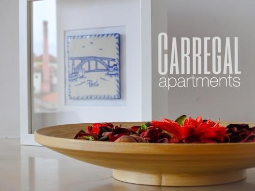 HotelCarregal Apartments