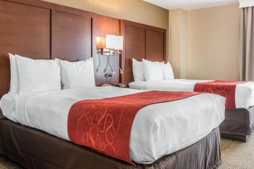 Comfort Suites Springfield Photo