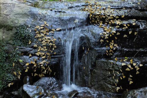 Chacra del Agua Photo