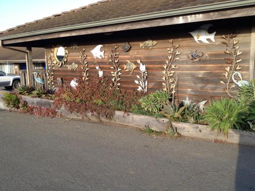 Surf Inn Photo