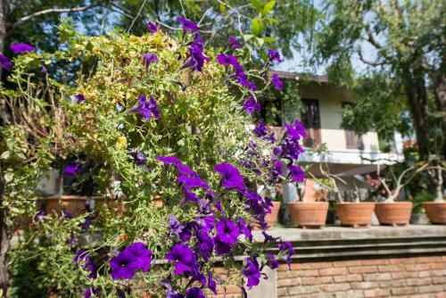 Phuttal Residence photo 50