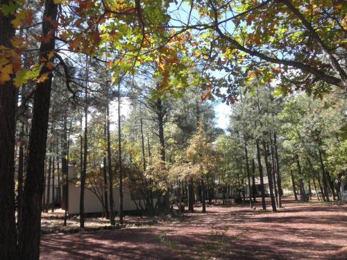 Buck Springs Resort