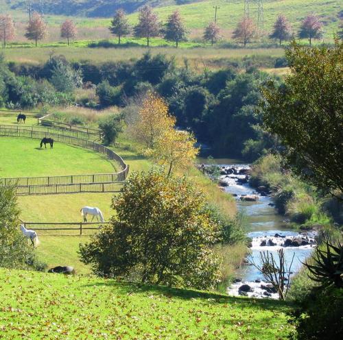 Caversham Mill Photo