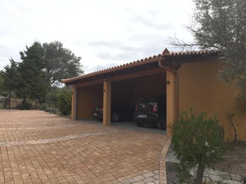 House Olive Grove