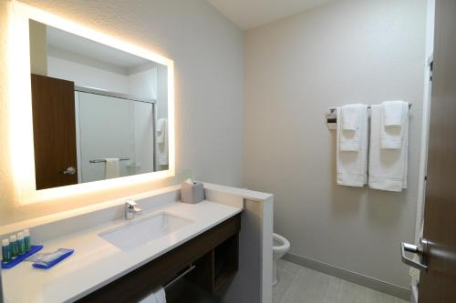 Holiday Inn Express & Suites Chicago North Shore - Niles - Niles, IL 60714