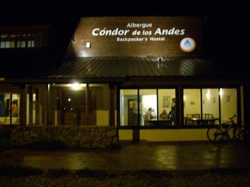 Condor De Los Andes Photo