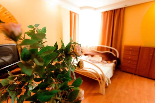 Hotel72 Arenda Apartment 50 Let VLKSM - 15/1
