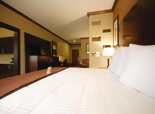 Best Western Plus Texoma Hotel and Suites Denison / Sherman Photo