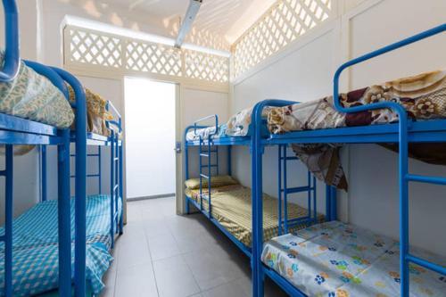 Bedcelona Gracia Hostel photo 25
