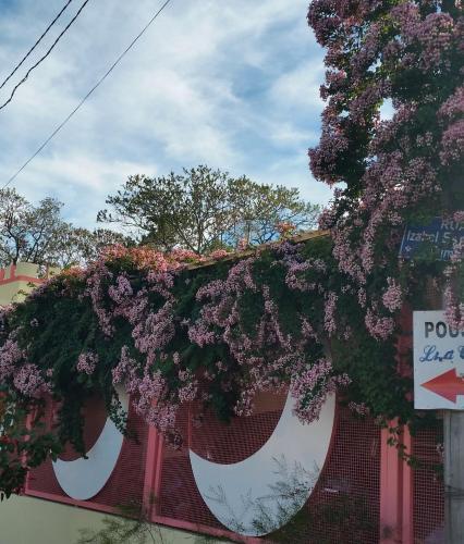 Pousada Lua Cheia Photo