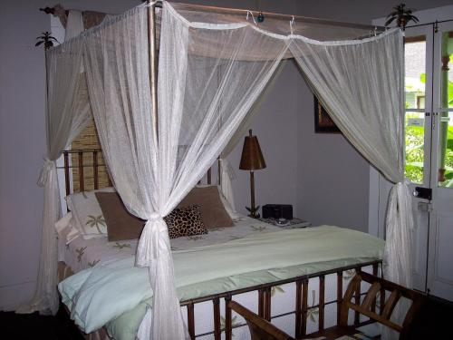 Maison Des Amis - Bed And Breakfast