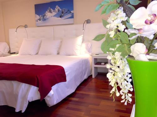 Habitación Doble con acceso al spa - 1 o 2 camas Hotel Del Lago 11