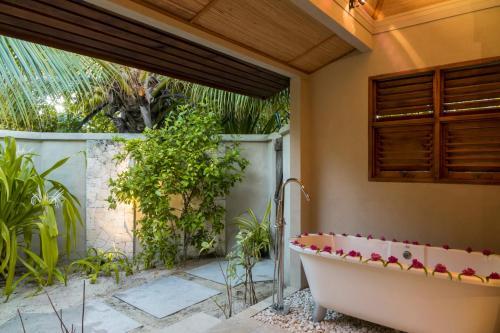 Denis Private Island, PO Box 404, Victoria, Mahé, Seychelles.