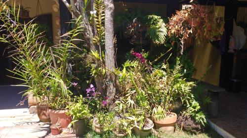 Suíte no jardim - Praia dos Anjos Photo