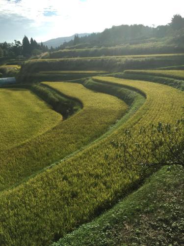農家民泊「お陽さまと風」