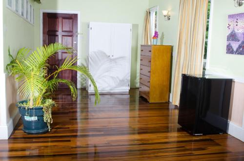 Palmiste, Soufriere, Saint Lucia.