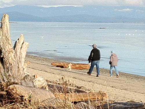 Beach Acres Resort - Parksville, BC V9P 2E4