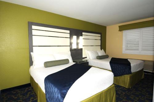 Best Western Antelope Inn & Suites Photo