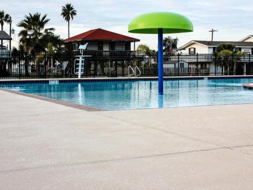 We Shell Sea - Galveston, TX 77554
