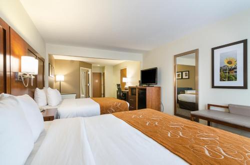 Quality Suites Photo