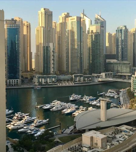 Hi Guests Vacation Homes -dream Tower