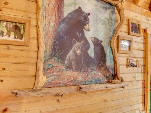Bear Haven Photo