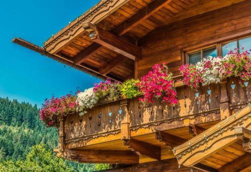 Abendblume - Leavenworth, WA 98826