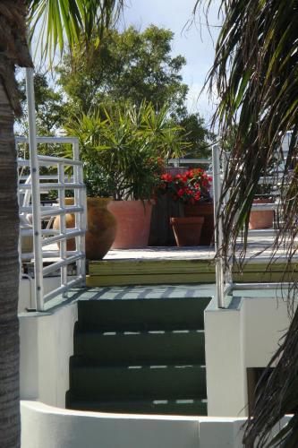 El Patio Motel Hotel Key West In Fl