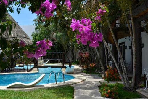 Hotel Maya del Carmen Photo