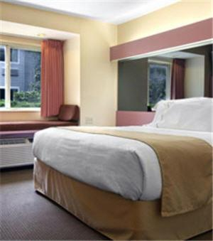 Microtel Inn by Wyndham Knoxville Photo