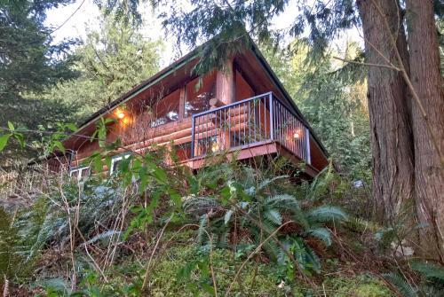 Three Bedroom Cabin - 97mf
