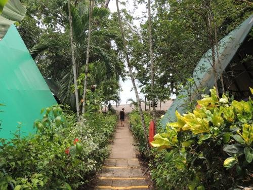 Corcovado Adventures Tent Camp Photo