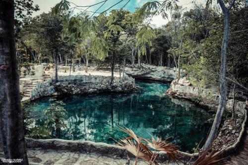 Cenote Casa Tortuga Tulum Photo