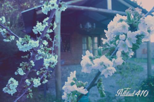 Altitud 410 Photo