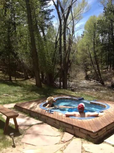Creekside Hot Springs Cabin - Nathrop, CO 80212