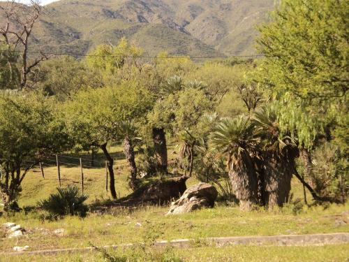 Cabanas En El Jardin Nativo