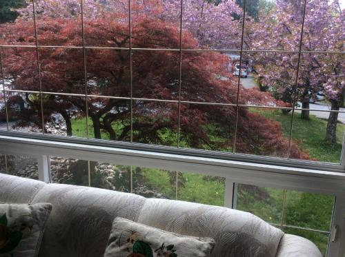 Vancouver Back Gardens - Abbotsford, BC V3G 1L4