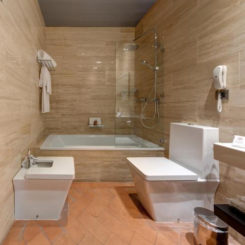Triple Room Palacio Pinello 18