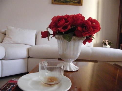 Canakkale Caner Apartment coupon