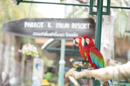 Suanpalm Farmnok Resort photo 57