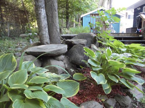 A Muskoka Dream Catcher Bed And Breakfast - Huntsville, ON P1H 1V1