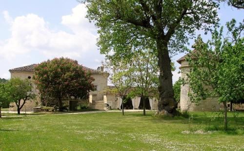 Domaine de L'Isle Basse