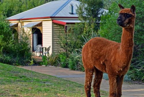 Araluen Park Cottages
