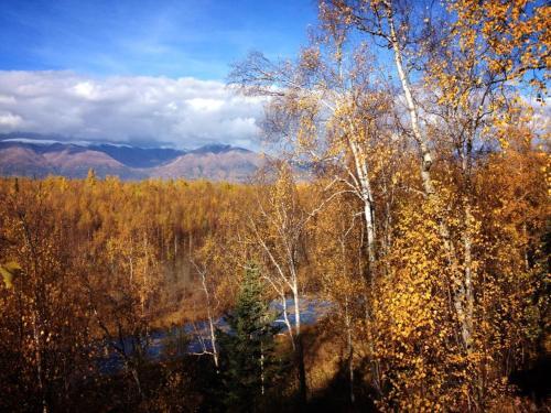 Alaska Creekside Cabins - Cottonwood Creek - Wasilla, AK 99654