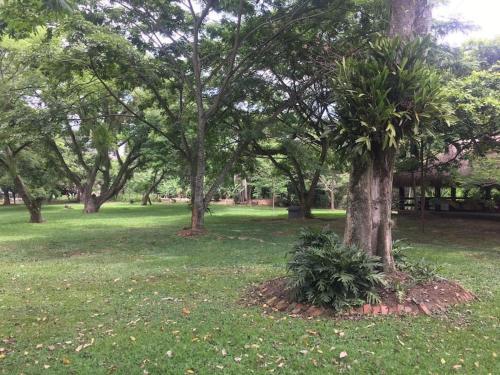 Foto de Hacienda Monterrey