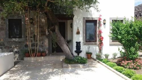 Turgutreis Villa Gunes rezervasyon