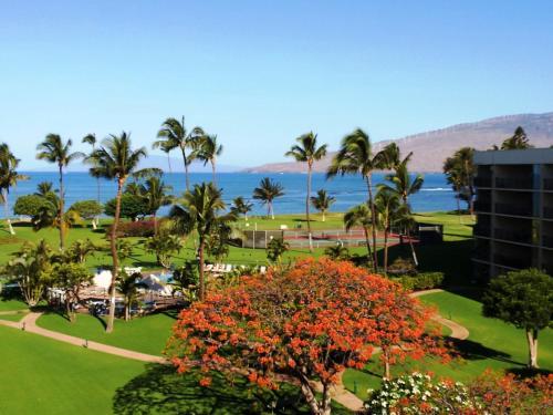 Maui Sunset - Kihei, HI 96753