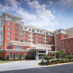 Residence Inn By Marriott Atlanta Perimeter Center/dunwoody