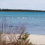 Bell Bay Resort